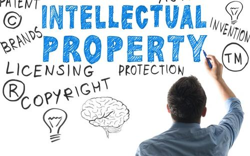 Intellectual Property Rights代写