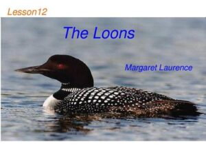 """The Loons""代写"